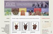 Baranya Megyei Múzeum belső weboldal